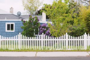 white wooden fence near green trees during daytime